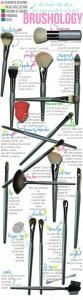 makeup-brushes-101-83x300