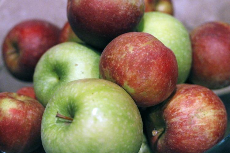 apple-picking-03